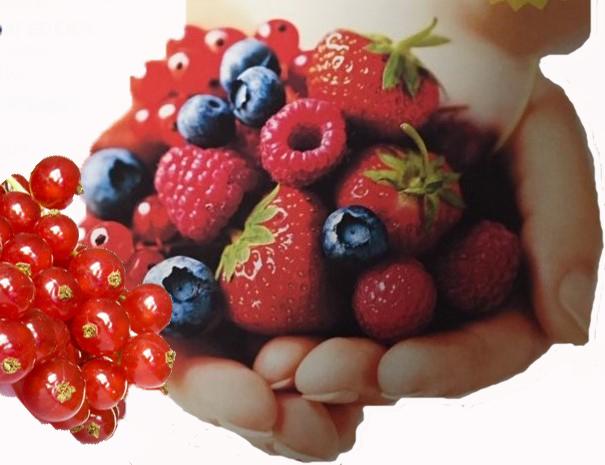 hand_met fruit